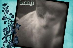 Scrapbook Kanji